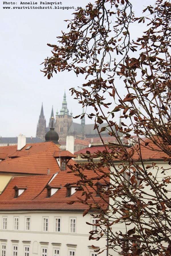 karlsbron, tjeckien, utflyktsmål