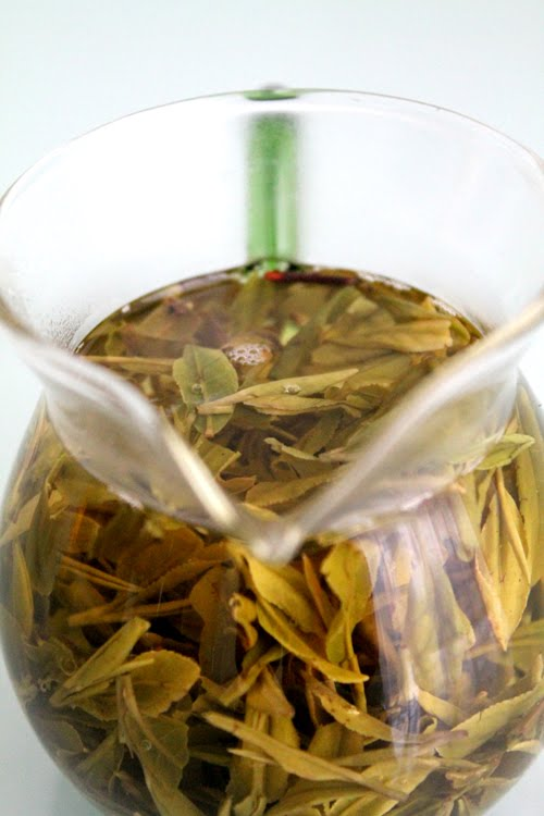 Lär dig mer om grönt te