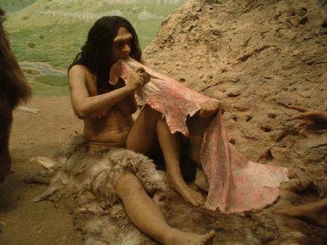 el hombre en la pre historia:
