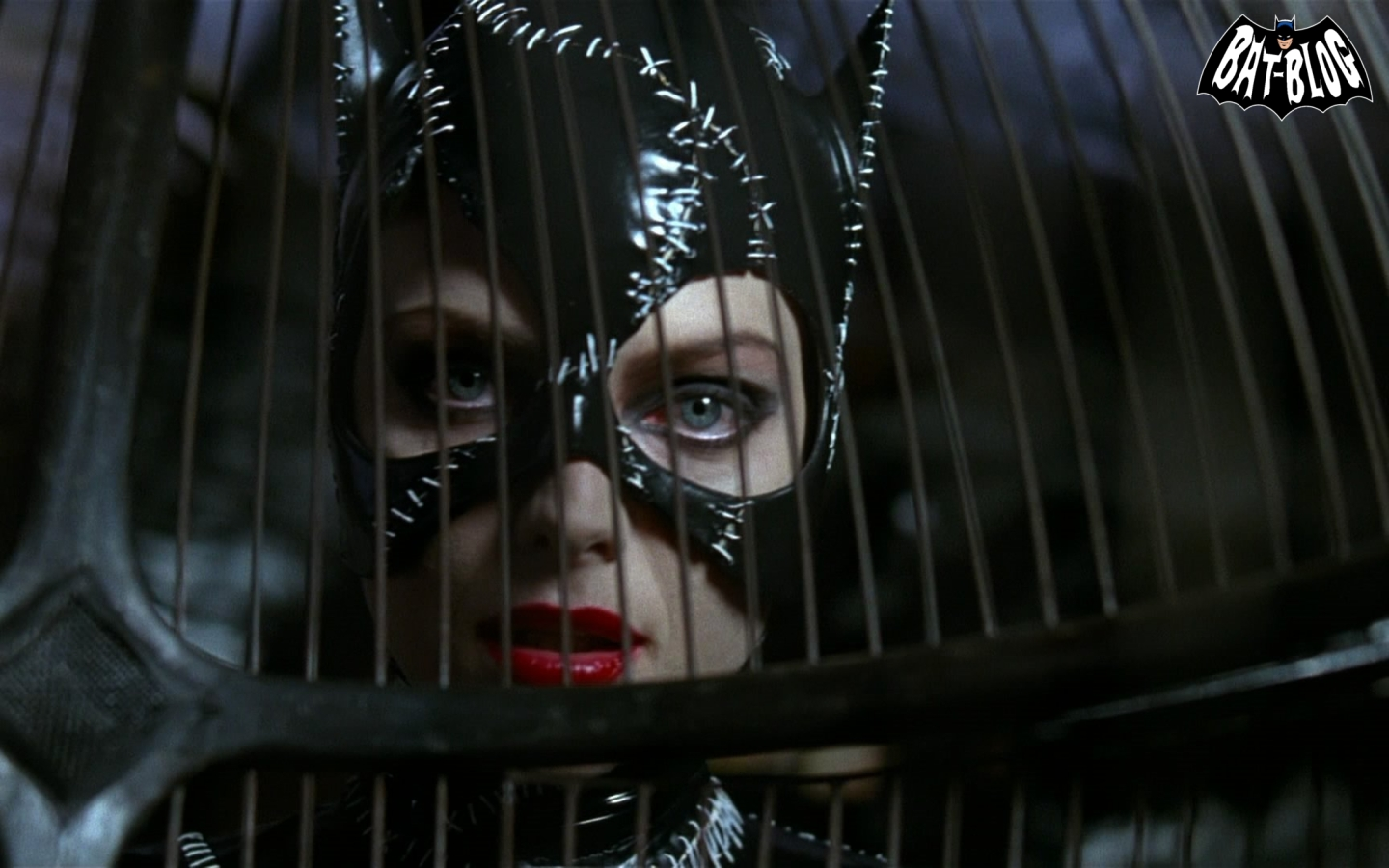 http://3.bp.blogspot.com/-ns6VwC80YUQ/TrAkdItsnJI/AAAAAAAAQuQ/kE7bTSRRxQs/s1600/wallpaper-batman-returns-movie-catwoman-1.jpg