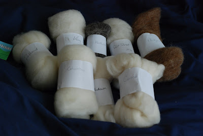 Different varieties breeds of sheep for spinning top and carded fiber