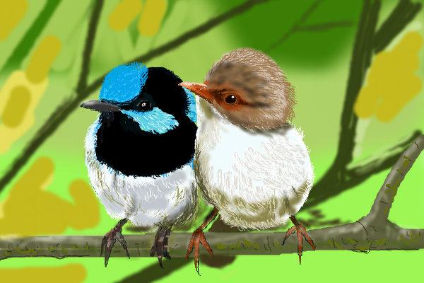 http://3.bp.blogspot.com/-nsIn5aY6AFI/TmqmkcxJwOI/AAAAAAAAGGM/w2E-zYvTEgk/s1600/Lovebirdswallpapersfordesktop1.jpg