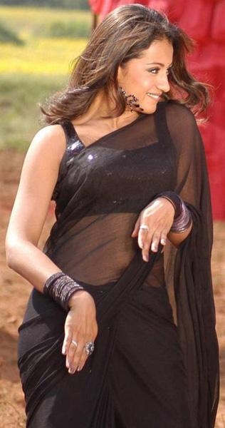 trisha krishnan gopichand shankam movie stills pictures10