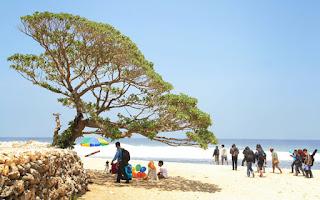 Pantai Pok Tunggal Gunung Kidul Yogyakarta