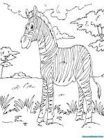 Buku Mewarnai Gambar Zebra