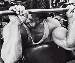 Arnold Forearms Grip Strength
