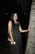 Pavani glamorous photos gallery-thumbnail-18