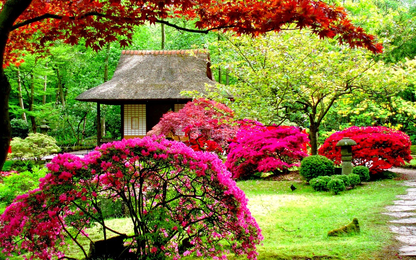 Flower garden wallpaper free download http refreshrose for Building a japanese garden in your backyard