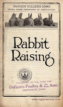 Rabbit Raising (1920)