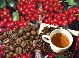 Schokolade und Kaffee - Party Service