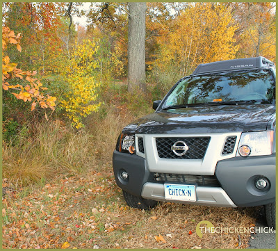 Leaf peeping photo safari in Connecticut.  via The Chicken Chick®