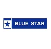 Blue Star Recruitment 2013