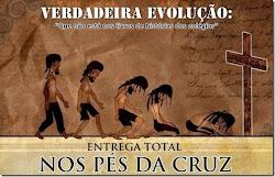 A minha evolução é essa. E a sua?
