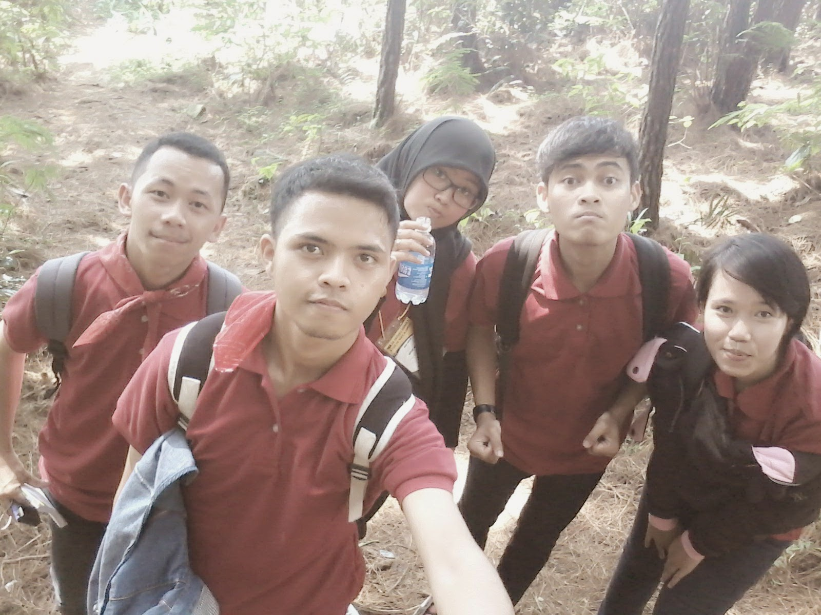 team horee di hutan pinus gunung salak