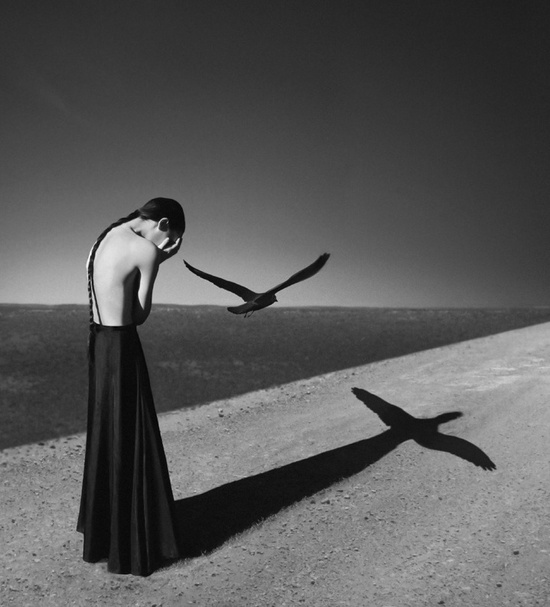 Noell S. Oszvald
