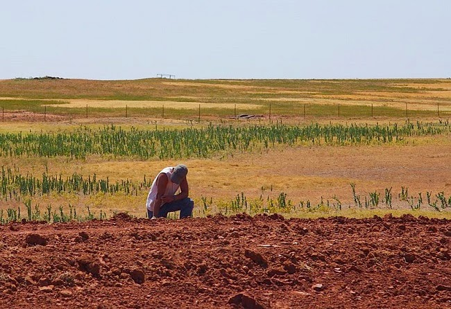 A farmer on parched land in Oklahoma state in the US Central Plains. (Credit: Al Jazeera English via Wikimedia) Click to Enlarge.