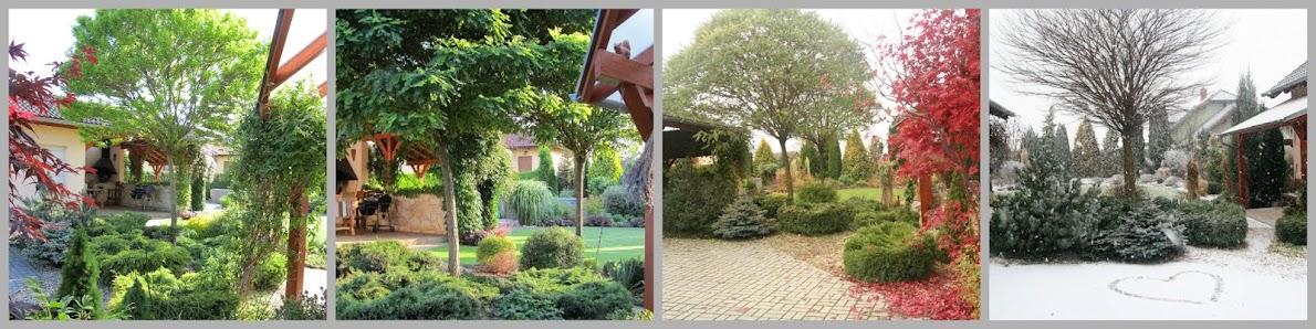 OSOBNÍ ZAHRADNÍ PORADCE -Zahrada je trvalka  -