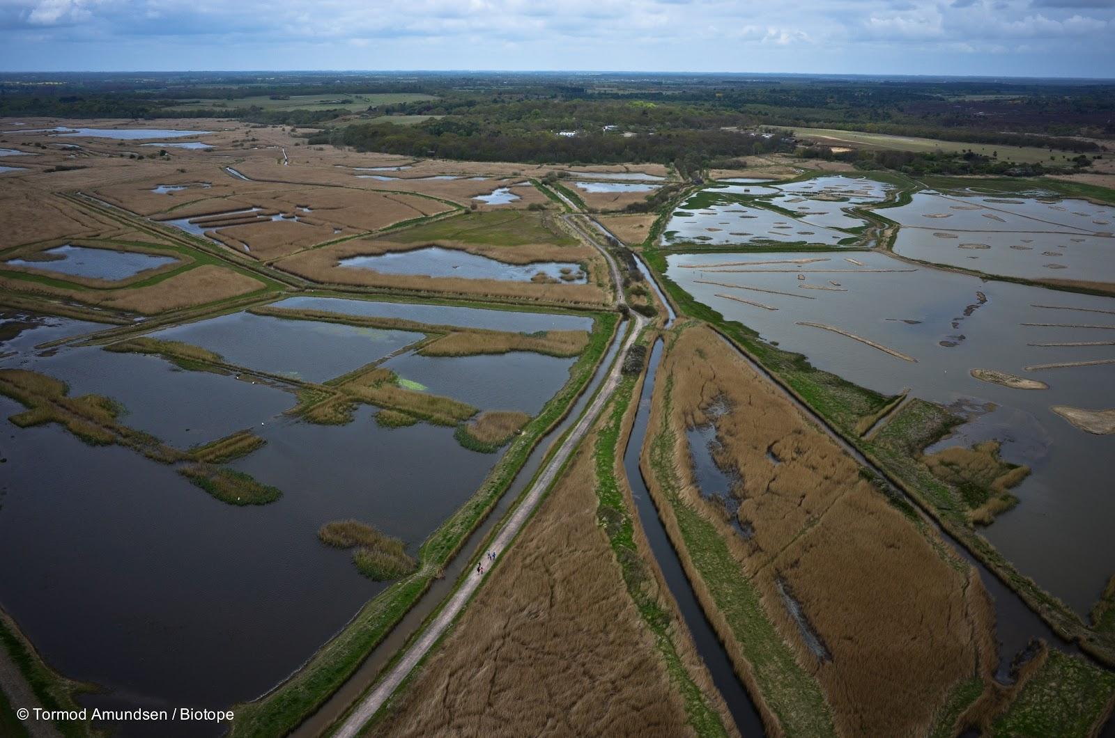 biotope: Intelligent design - the RSPB Minsmere nature reserve