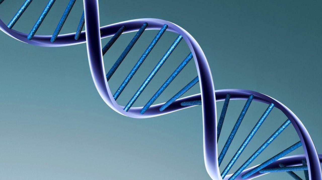 ARN en biologia