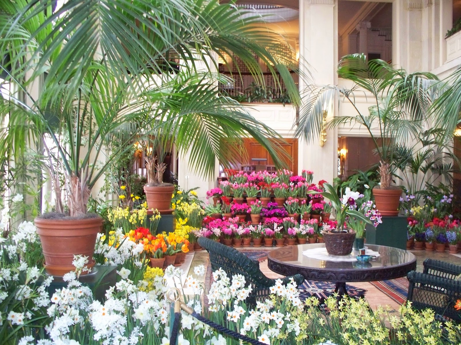 Explore western new york article about indoor gardens in for Indoor gardening nyc