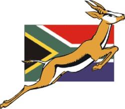 RWC2011 : IL SUDAFRICA FA IL CAMPIONE DEL MONDO CON LE FIJI