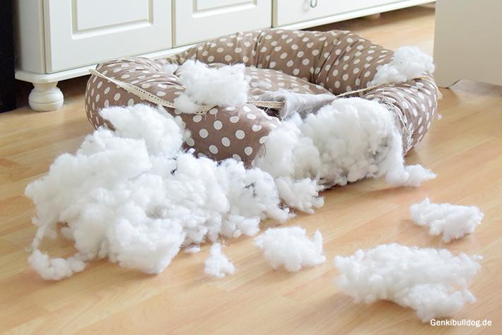 Explodierendes Hundebett