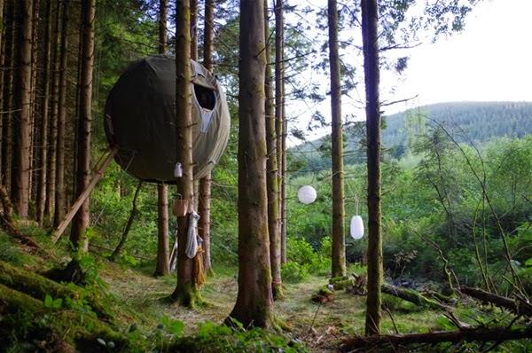 Ağaç çadırı