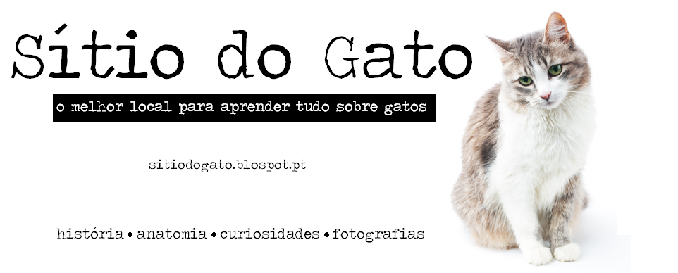 Sítio do Gato