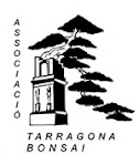 Associaci Tarragona Bonsai