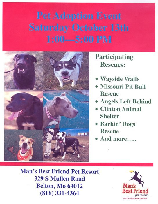 Adopt A Dog Kansas City Missouri Area