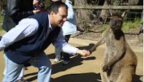 2007 - UN SALUDO DESDE AUSTRALIA
