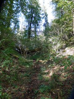 Bild 3: Letzter Graben vor der ehemaligen Karlsburg