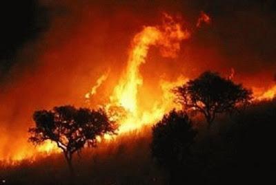 incendios forestales colombia, 06 de Enero 2013