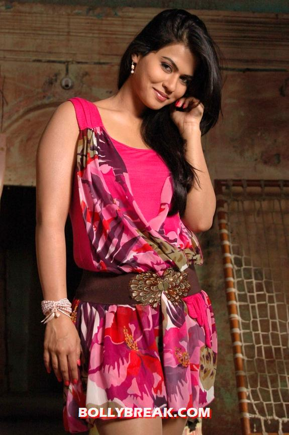 Sharmila Mandre in pink dress - SHARMILA MANDRE LATEST PHOTOS 