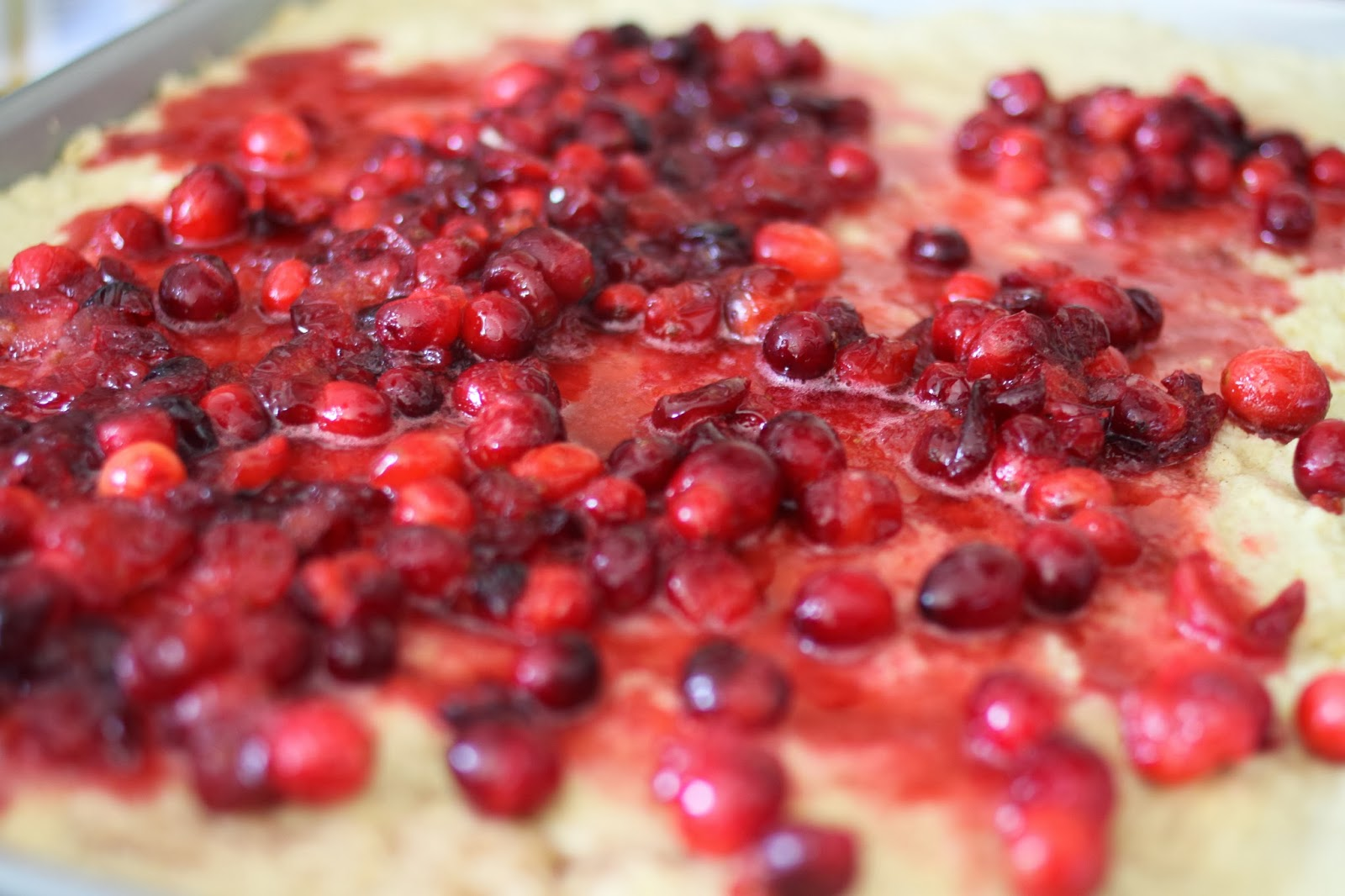 The Larson Lingo: Cranberry Cookie Bars