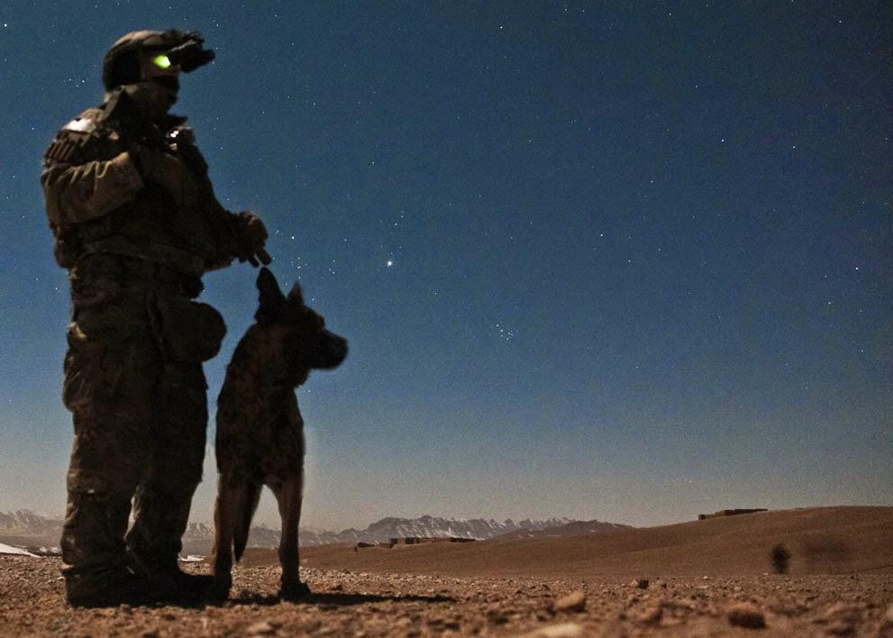 http://www.theatlantic.com/infocus/2014/06/afghanistan-dogs-of-war/100750/