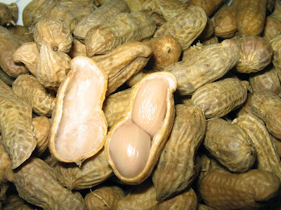 10 Manfat Kacang Tanah