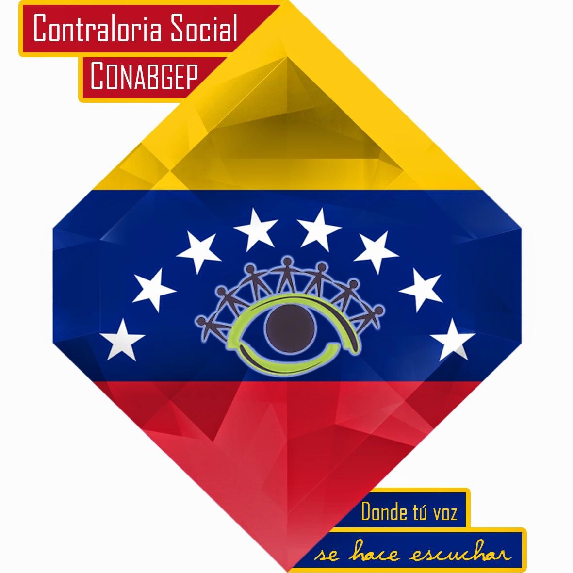 Contreloria social