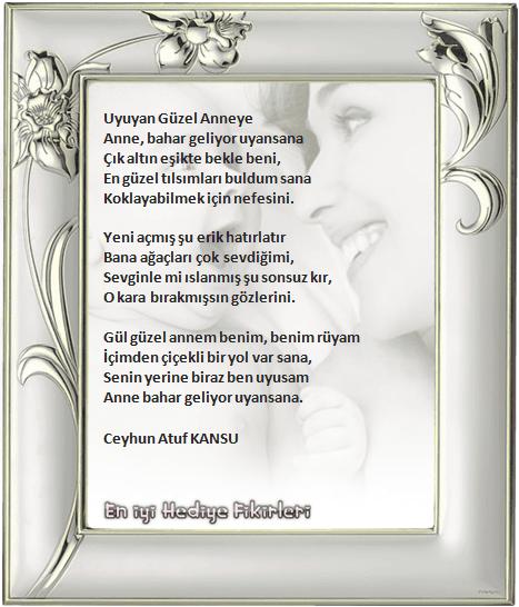 Resimli Anneler Günü şiirleri