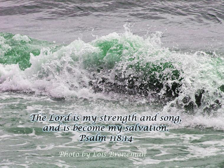 Ocean - Psalm 118:14