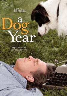 A dog year – DVDRIP LATINO
