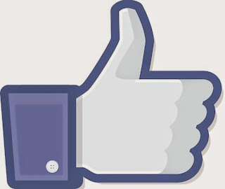 Facebook Like Status Icon