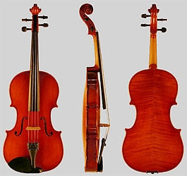 dan Violin Viola cello