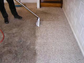 Carpet Cleaner Rental