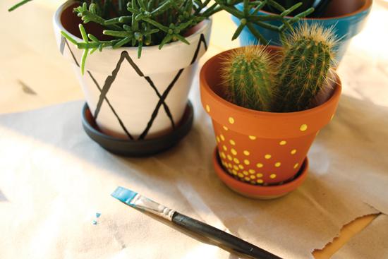 binedoro Blog, DIY, Blumentöpfe bemalen, Acrylfarbe, Mustermix, Sukkulente, Kaktus
