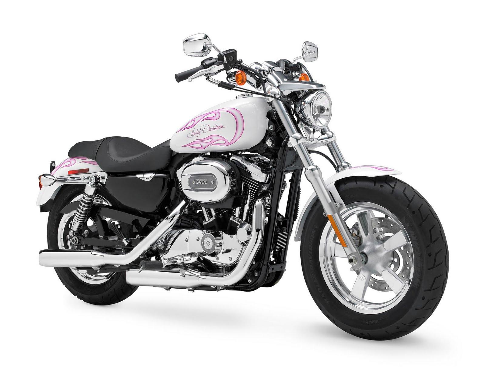 DC RIDERS  New 2011 Harley Davidson XL1200C Custom H D1 Sportster