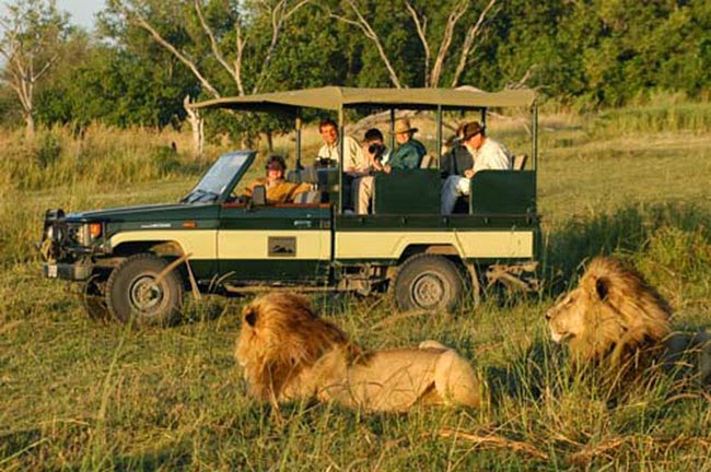 naturaleza áfrica tanzania