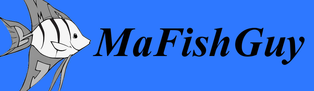 MaFishGuy Fish Aquarium Information