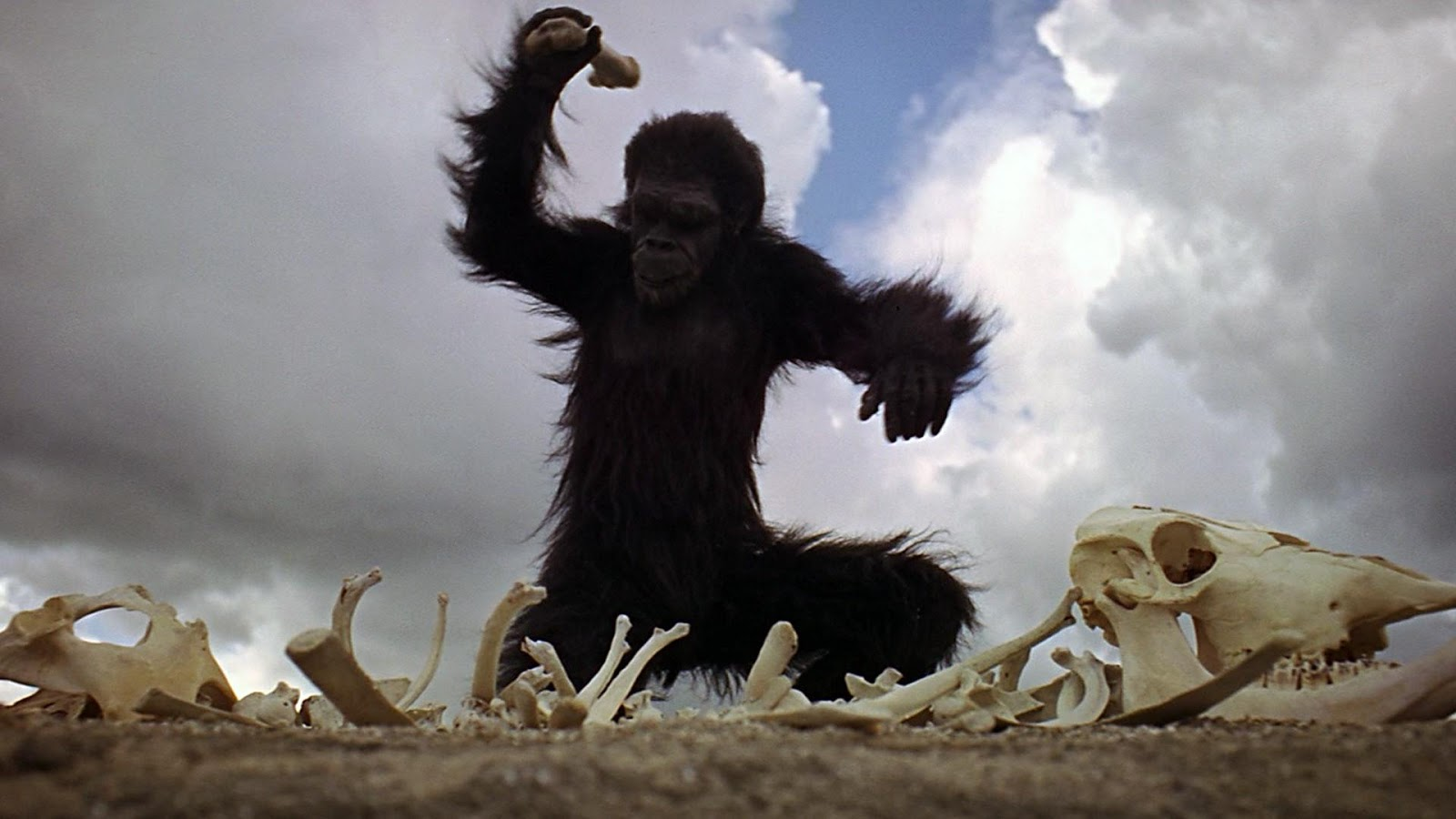a review of stanley kubricks film 2001 a space odyssey '2001: a space odyssey': kubrick's sci-fi film was hardly seen as a classic in newsweek's 1968 review rightly hailed today as a science-fiction classic and a trailblazing piece of moviemaking, director stanley kubrick's cerebral 2001: a space odyssey was met with far different reactions after its.