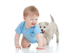 little boy kid playing with pet puppy